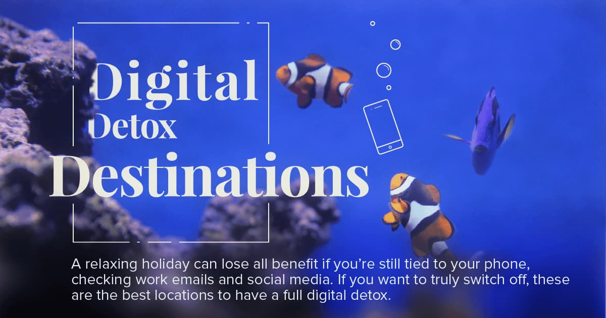 Digital Detox Destinations | Hayes and Jarvis